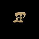 RF-Logo1.png