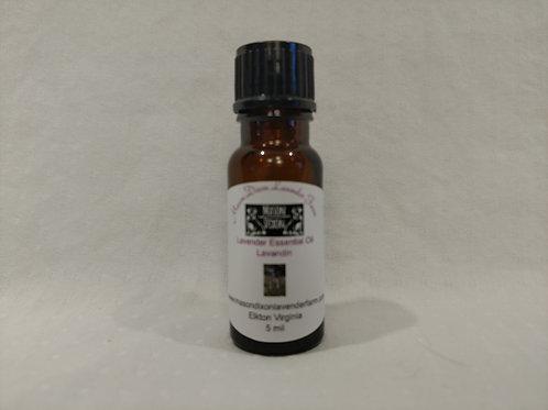 Lavender Essential Oil Lavandin 5 ml