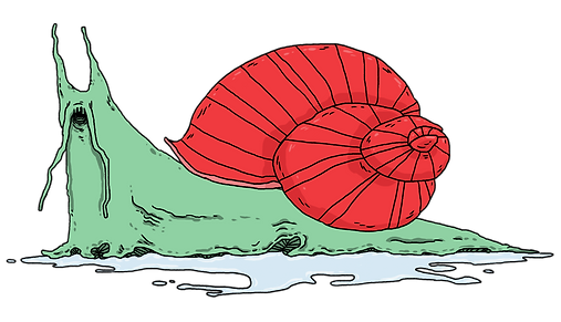 Snail_Whole.png