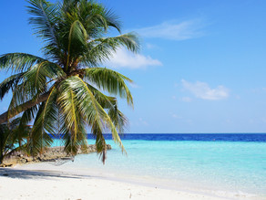 Things I Learned While Working in The Maldives