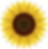 flowers-1169667_960_720.png
