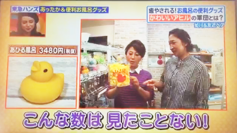 日本テレビ、ヒルナンデスであひる風呂が紹介されました!