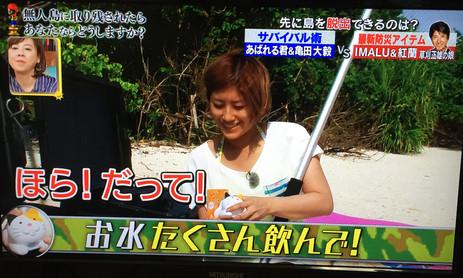TBSのアイ・アム・冒険少年でにゃんこ計が紹介されました!