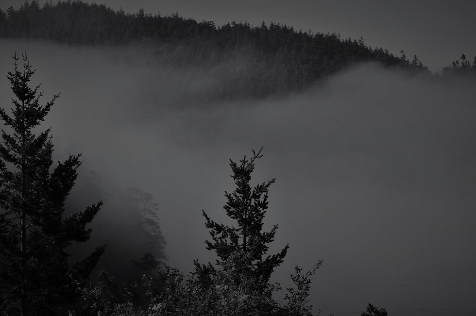 Tess Washington - Oregon Trip 271 (2).JP