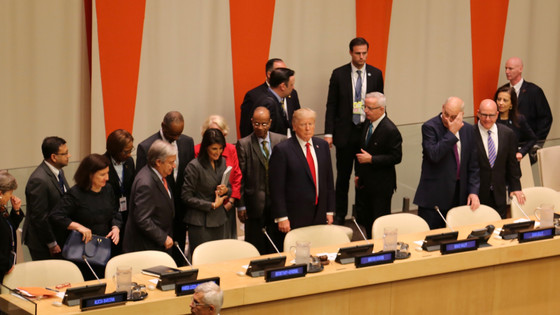 UN Reform, Political Declaration
