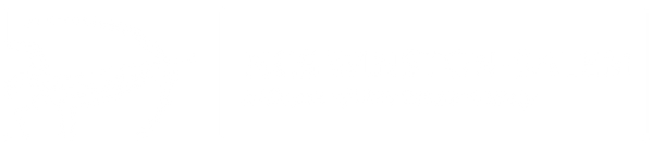 NCS-WS whtlogo-with box.png