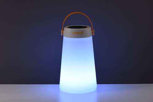 Take Me Outdoor Speaker Light