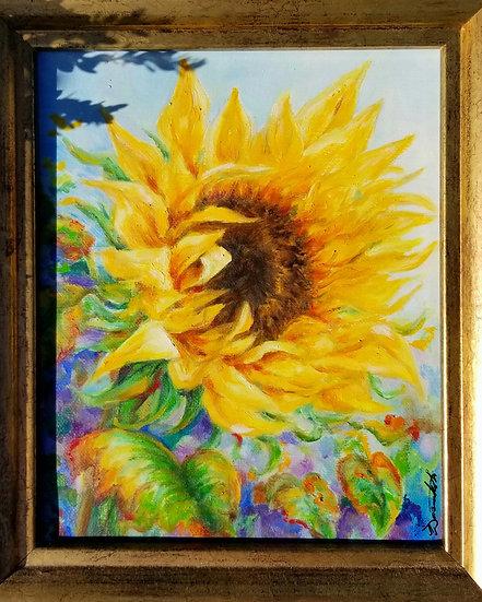 A Hopeful Sunflower