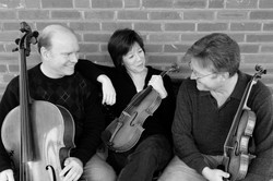 Aspen String Trio