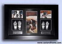 Cast & Frame Pet Paws 3D (castandframe)