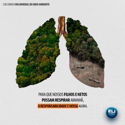meio-ambiente-rev01.png