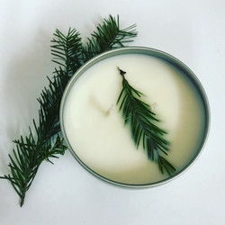 A little fir for your holiday