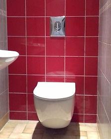 toilette_edited.jpg