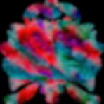 lotus-3767134_1920.png
