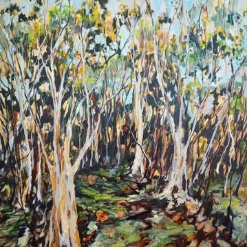 Botany Trees, Oil on Canvas 110cm x 110cm