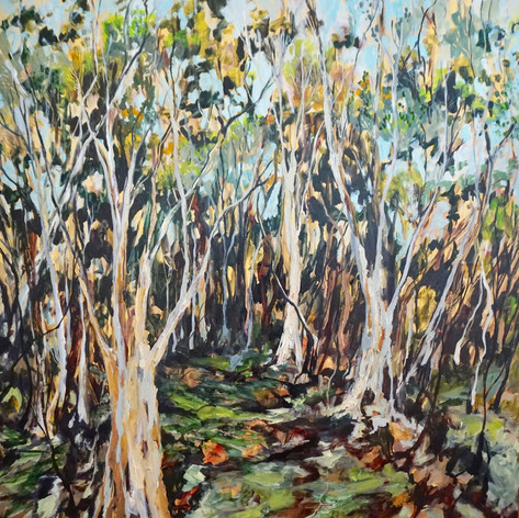 Botany Trees, Oil on Canvas 110cm x 110cm