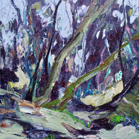 Mosses in the Rainforest - SOLD