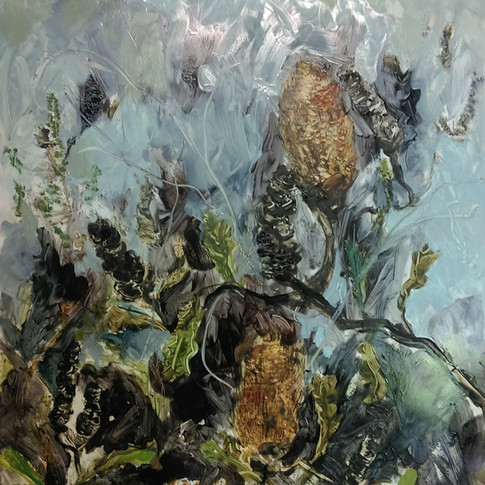 Banksias - SOLD