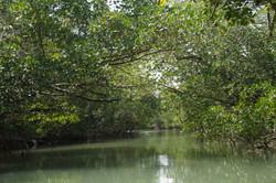 CANAL DO FURO VELHO