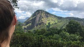 3 steder du SKAL besøge i Sri Lanka😉