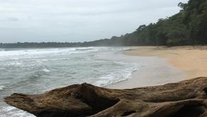 Rundrejse i Costa Rica