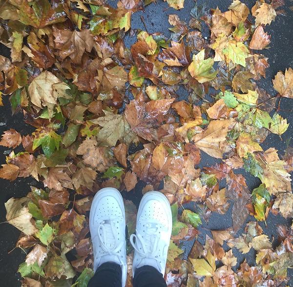 flatlay leaves