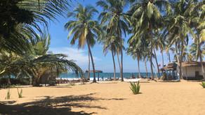 6 ting du skal vide før din ferie i Sri Lanka