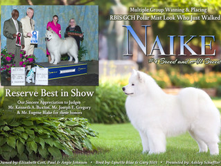 Naike earns RESERVE BEST IN SHOW!!!
