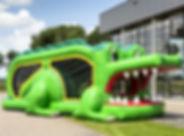mini run krokodil - kopie.jpg
