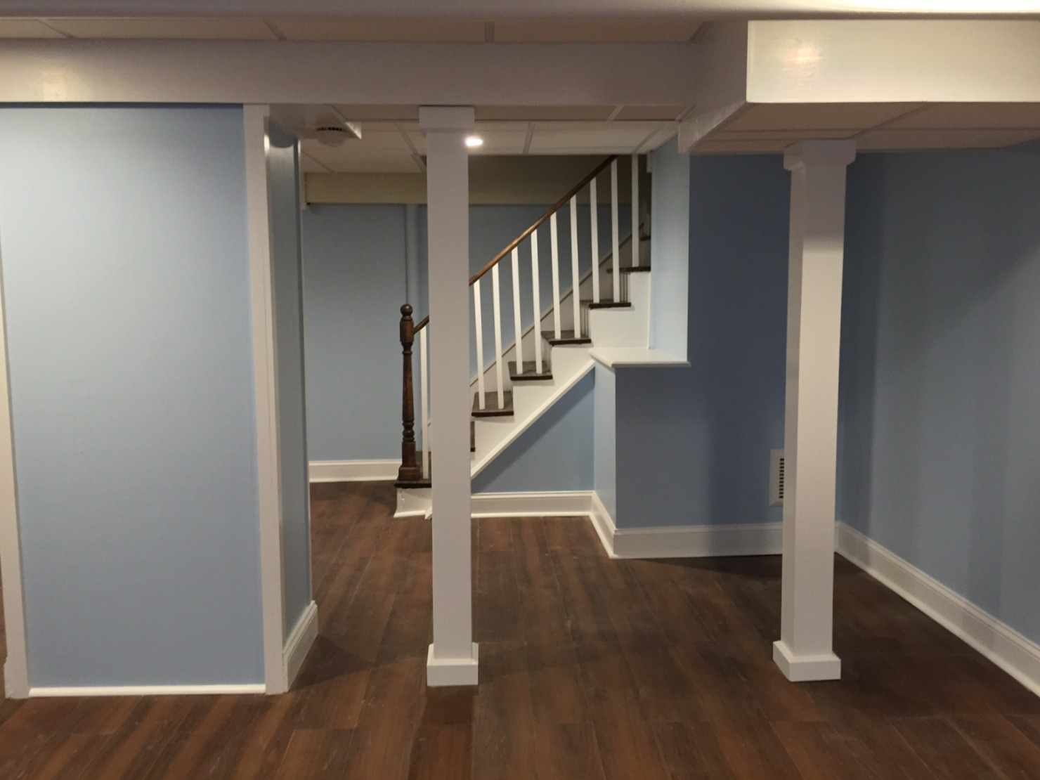 Remodeled-Basement-Newton