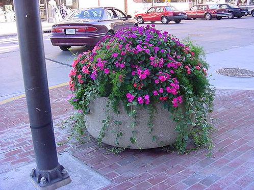 Premium Flower Bowl
