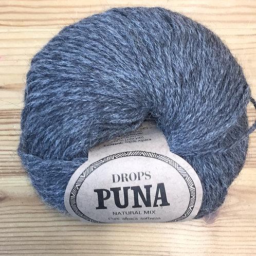 PUNA 05