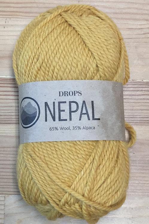 NEPAL 2923