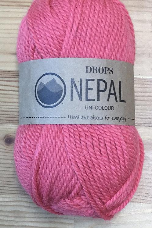 NEPAL 8909