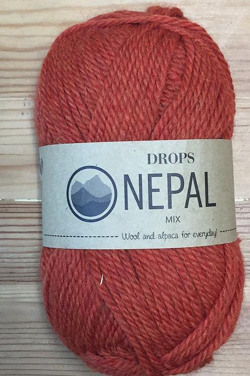 NEPAL 2920