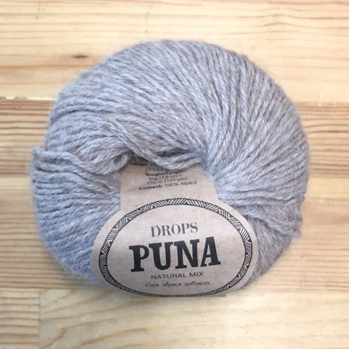PUNA 04