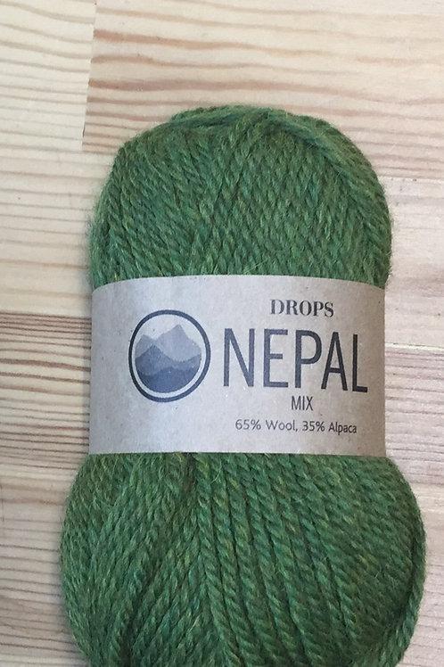 NEPAL 7238