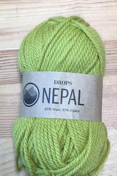 NEPAL 8038