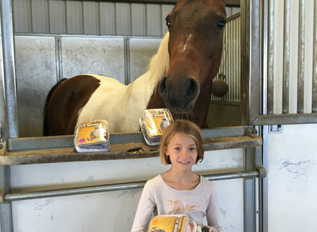 BHH student Brynn noticed the program's existing fly masks were in bad shape, and the flies were