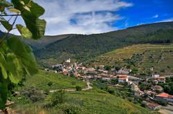 Covas do Douro