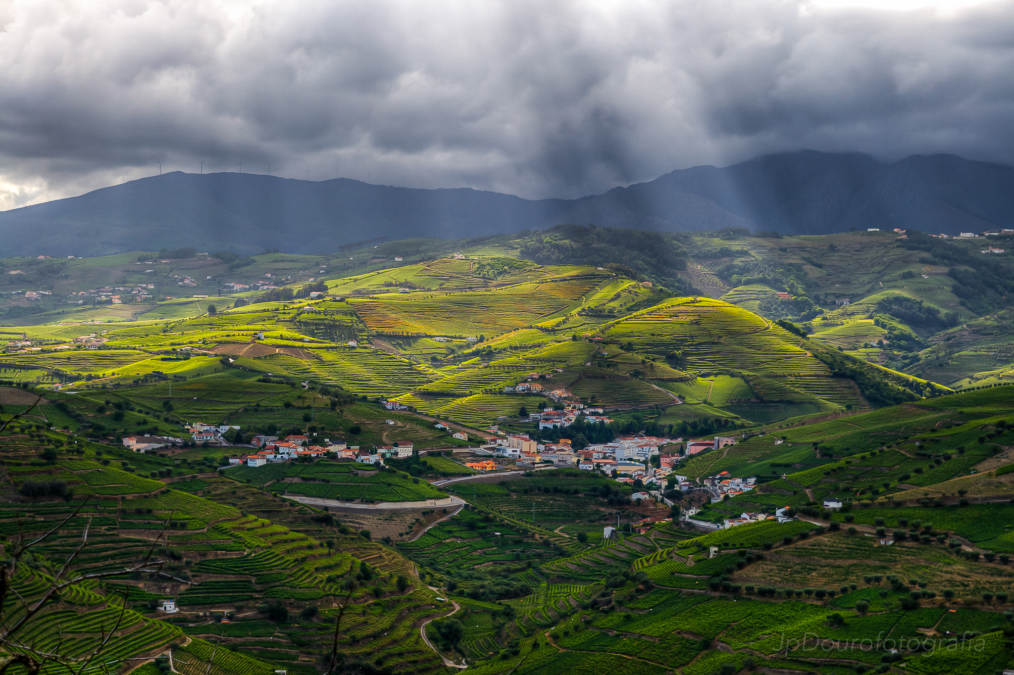 Fotografia_de_vinhos_Douro