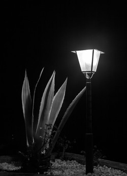 Na noite