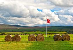 Escocia - Culloden