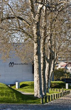 Museu de Vila Real