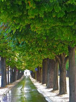 França - Paris, Campo Elísios