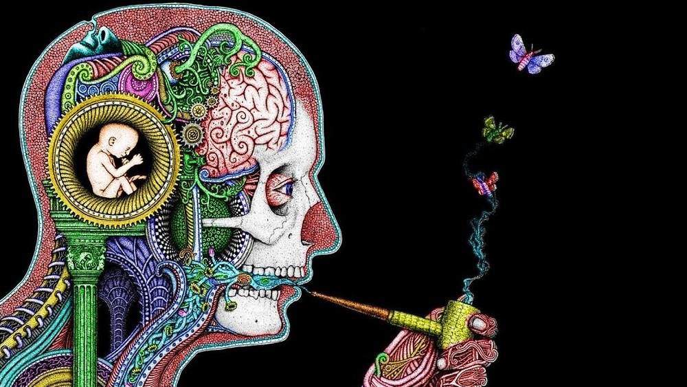 open-mind-2-1024x576.jpg