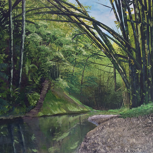 Caura River Trinidad
