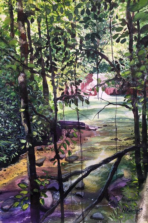 Hike To Rio Seco Falls Trinidad and Tobago