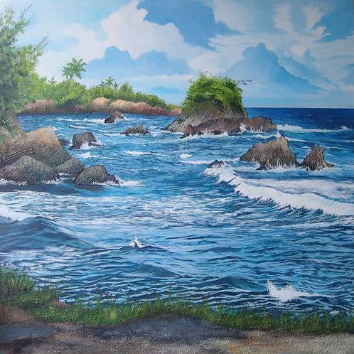 Toco North Coast Trinidad