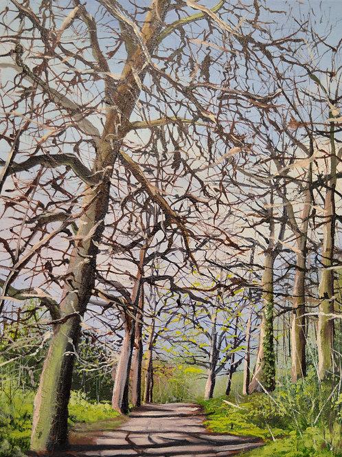 Interlocking Branches